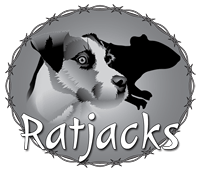 Rat Jacks - Jack Russell Terrier